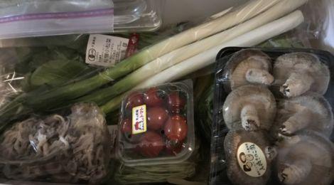 2016年ふるさと納税〜千葉県芝山町・旬野菜の詰め合わせ「大地の恵みセット」+コシヒカリ3kg
