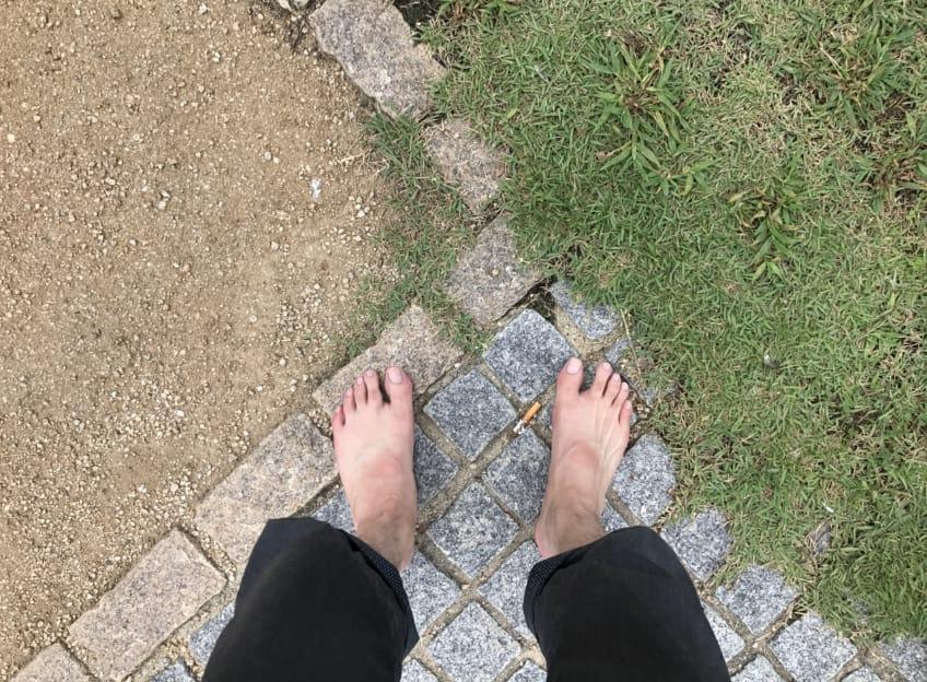 土、石畳、芝生
